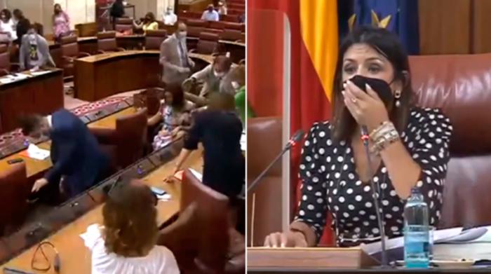 La presencia del roedor en el salón de Plenos obligó a detener el trabajo de los legisladores por unos minutos. Foto: Captura de pantalla