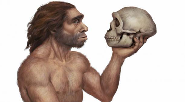 Imagen referencial. Cráneo de un neandertal. Foto: Ancient origins