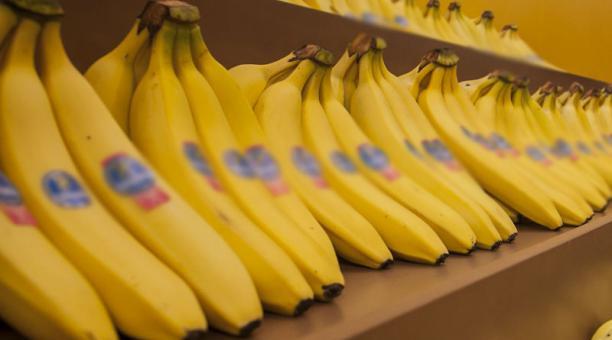 Imagen referencial. Asociaciones de exportadores y productores de banano de Ecuador y países de la región emitieron una carta ante la reducción del precio del banano en una cadena de supermercados de Alemania. Foto: Archivo/ EL COMERCIO
