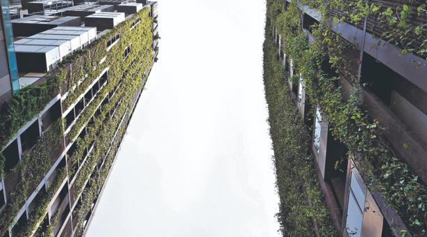 Las ciudades deben implementar espacios verdes para disminuir el impacto de la emisión de gases.