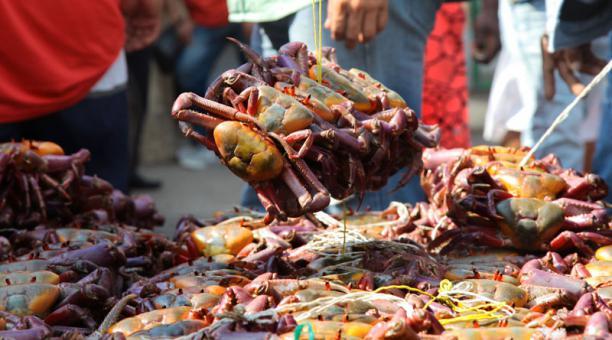 La veda del cangrejo en el Ecuador culminará el 28 de febrero del 2021. Foto: Archivo/ EL COMERCIO