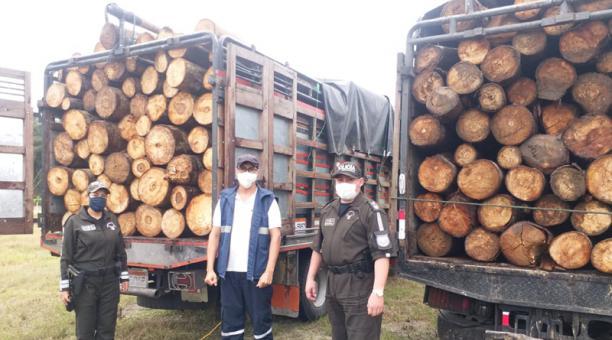 El 4 de enero pasado, en Santo Domingo de los Tsáchilas se decomisó un cargamento. Foto: Cortesía