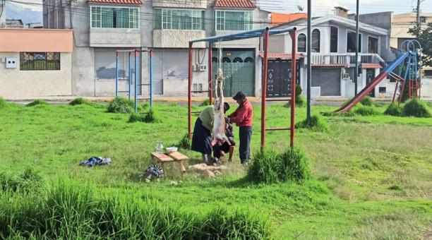 En el parque del barrio Las Cuadras, en el sur de Quito, tres personas despostaron un borrego junto a los juegos infantiles. Ocurrió el 24 de enero del 2021. Foto: cortesía
