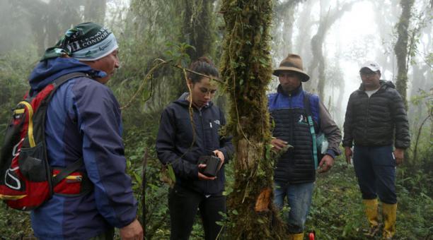 Lisseth Alvarado y Rodrigo Beltrán (sombrero) verifican el estado de una cámara  trampa en los páramos de Píllaro. Foto: Glenda Giacometti / EL COMERCIO