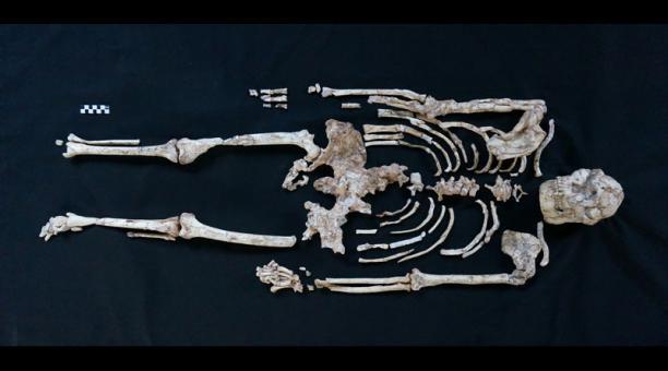 El esqueleto de 'Pie Pequeño' en Sterkfontein, Sudáfrica. Foto: REUTERS