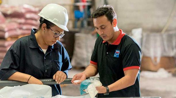 En 2 o 3 años, los estudiantes con formación técnica dual tienen una profesión y a la vez están capacitados de una forma específica. Foto: www.formados.ec