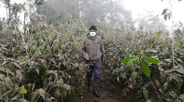 Plantaciones en el cantón Pallatanga se afectaron por la caída de ceniza del Sangay. Foto: Modesto Moreta / EL COMERCIO
