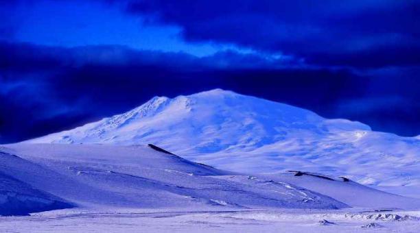 Imagen referencial: El calentamiento global provocará que en algunas décadas los arbustos vuelvan a crecer en el Círculo Polar Ártico. Pixabay