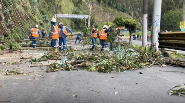 Del 15 al 19 de marzo de este 2021, en el Centro de Operaciones de Emergencia Metropolitano se registraron 15 movimientos en masa o deslaves ocurridos por las lluvias registradas. Además, se han registrado 11 caídas de árboles, la mayoría porque el terren