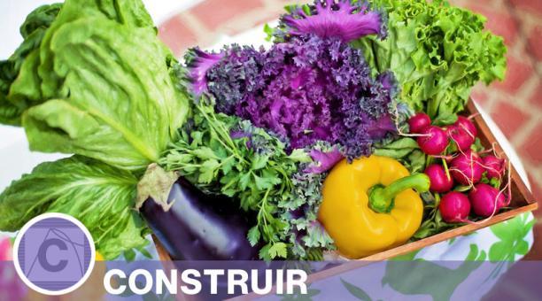 Imagen referencial. Los vegetales y hortalizas de ciclo corto son los ideales para arrancar un huerto en la vivienda y tener al alcance una variedad de alimentos saludables. Foto: Pixabay