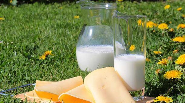 Imagen referencial. La leche y los productos lácteos deberían ser parte de una dieta humana equilibrada. Foto: Pixabay