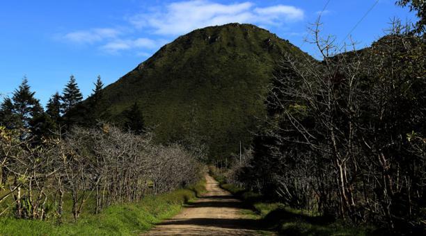 La Reserva Geobotánica Pululahua es uno de ellos. Está ubicada a 25 kilómetros al norte de la capital, cerca de la Mitad del Mundo.