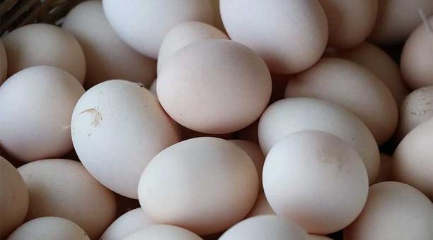 Imagen referencial. La empresa Hillandale Farms Corporation fue denunciada por la Fiscalía de Nueva York por especular con los precios de los huevos en los primeros meses de la pandemia. Foto: Pixabay