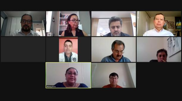 Ante la Comisión también comparecieron representantes de médicos posgradistas. Foto: Twitter @AsambleaEcuador