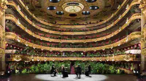 'Concierto para el bioceno', en Barcelona. Un cuarteto de cuerdas tocó para un público formado por 2 292 plantas. Foto: loop barcelona.com