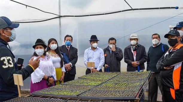 En la parroquia San Pablo del Lago, en Otavalo, se inauguró uno de los invernaderos para semilleros de hortalizas y legumbres. Foto: cortesía Junta Parroquial de San Pablo