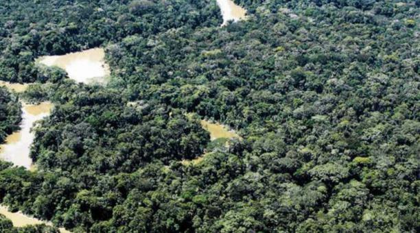 El plan se lleva a cabo en las provincias ecuatorianas orientales de Napo, Pastaza, Sucumbíos y Orellana. Foto: Archivo/El Comercio.