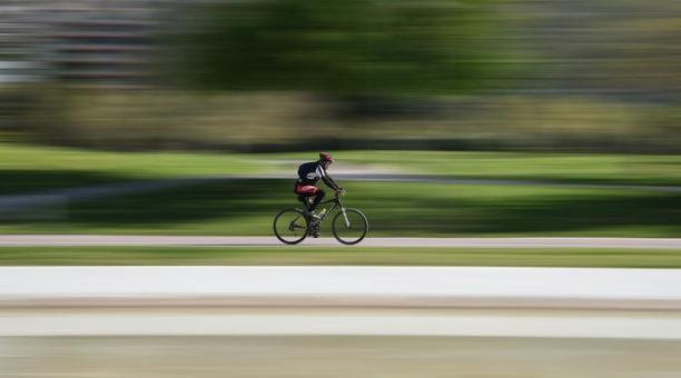 Imagen referencial. Un ciclista de 49 años falleció al tragarse por accidente una abeja, mientras montaba en su bicicleta en una carretera de España. El hombre presentó insuficiencia respiratoria. Foto: Pixabay.
