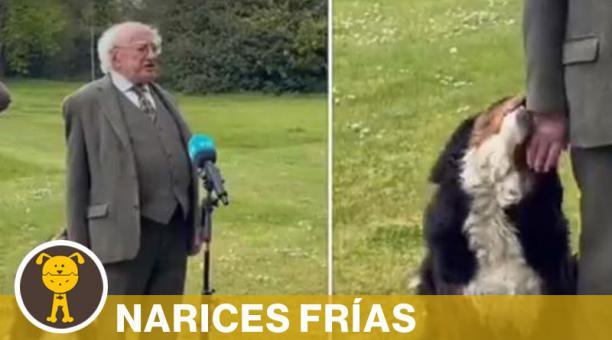 Las cámaras han captado que tanto Síoda como Bród han acompañado al presidente de la República de Irlanda a eventos o reuniones importantes. Foto: Captura de pantalla
