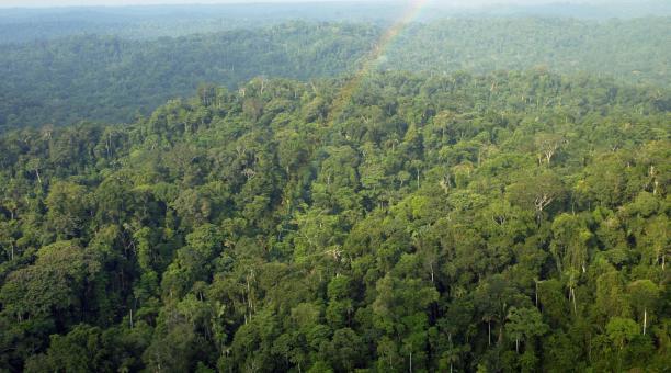La Asamblea Nacional de Francia aprobó este martes 4 de mayo de 2021  una ley contra el cambio climático que desincentiva el uso de transportes contaminantes y que incluye medidas para proteger la Amazonía francesa de su provincia de Guyana. Foto: ARCHIVO