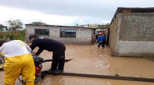 Varios cultivos de hortalizas y legumbres fueron afectados por la granizada que cayó en las diferentes zonas de Latacunga. Foto: Cortesía del Cuerpo de Bomberos de Latacunga.