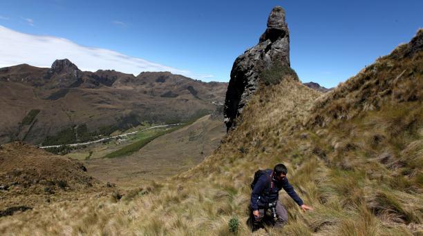 El Parque Nacional Cajas es un hermoso pajonal de 28 544 hectáreas. Foto: Xavier Caivinagua/ EL COMERCIO.