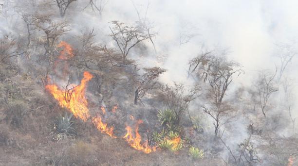 Un incendio en  Puembo se inició el domingo  6 de septiembre de 2015. Dejó dos bomberos fallecidos, tras 27 horas de labores para sofocar las llamas. Foto: Eduardo Terán/El Comercio