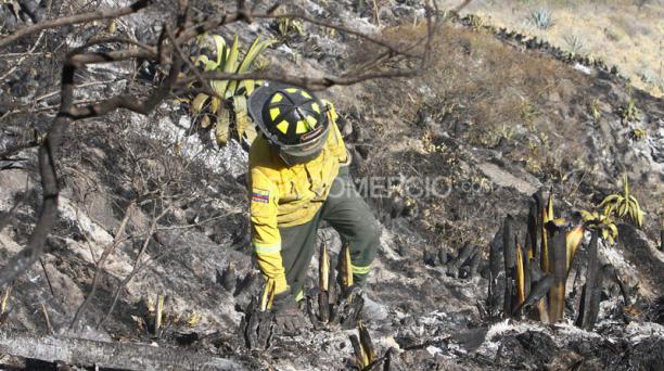 Un incendio en Puembo se inició el domingo 6 de septiembre de 2015 y fue controlado en más de 68 horas. Ya hay tres bomberos fallecidos en este siniestro. Foto archivo: Eduardo Terán/El Comercio