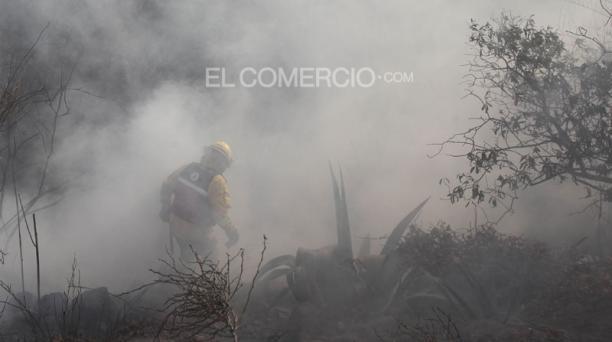 Incendio forestal en el sector Los Pinos de Santa Rosa, Tumbaco. Foto: Vicente Costales / EL COMERCIO.
