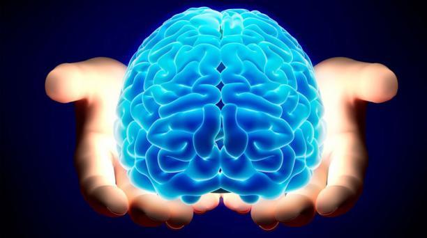Los cerebros de hombres y mujeres no tienen ningún tipo de diferencia según la ciencia.