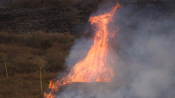 Incendio forestal en la laguna de Yaguarcocha fue controlado. Foto: Francisco Espinoza / EL COMERICO