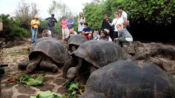 218 365 personas visitaron el Parque Nacional Galápagos, en el 2016.
