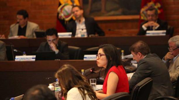 La concejala Daniela Chacón interviene durante el debate de la ordenanza. Foto: Julio Estrella / EL COMERCIO