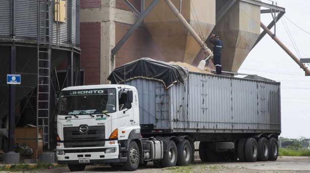 En la planta ubicada en Daule un camión recibe arroz paddy del silo de la Unidad Nacional de Almacenamiento. Foto: Enrique Pesantes / EL COMERCIO
