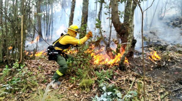 Seis conatos de incendios forestales se registraron el martes 17 de julio del 2018. Foto: Cortesía del Cuerpo de Bomberos de Quito