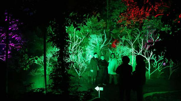 Los visitantes admiraron la belleza de la vegetación. Foto: Diego Pallero / EL COMERCIO