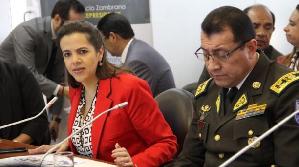María Paula Romo acudió este 11 de julio del 2019 a la Comisión Ocasional para atender los casos de Personas Desaparecidas de la Asamblea Nacional. Foto: Twitter Ministerio del Interior Ecuador
