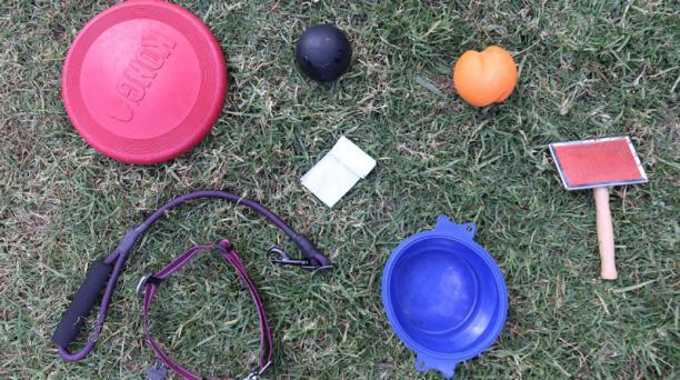 Correa y collar. Placa. Los juguetes. Las bolsas para recoger el excremento. Son algunos de los objetos que debe portar el dueño de un perro al sacarlo a pasear. Foto: Vicente Costales / El Comercio