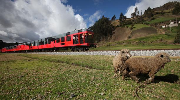 Tres rutas del tren en Chimborazo tendrán tarifas especiales durante septiembre, para motivar a que los turistas nacionales vivan la experiencia. Foto: Cortesía Ministerio de Turismo