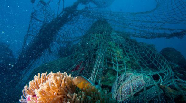 Las redes fantasmas son consideradas como los desechos marinos plásticos más perjudiciales para los animales y los ecosistemas.