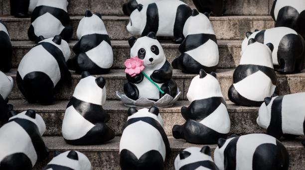 Cientos de osos pandas hechos de papel maché, diseñados por el artista francés Paulo Grangeon en las escaleras hacia el buda de Tian Tan, en la isla de Lantau